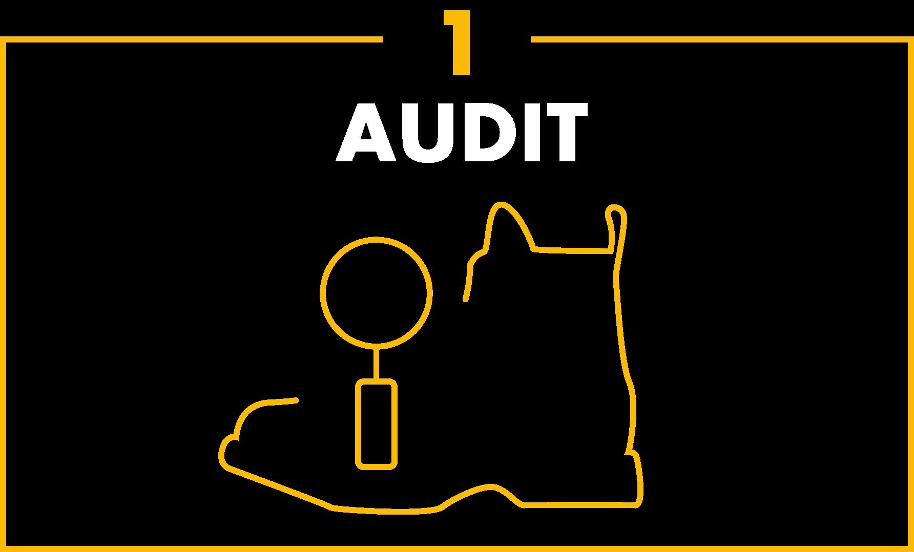 Audit p1 1