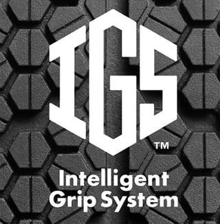 igs_logo.jpg